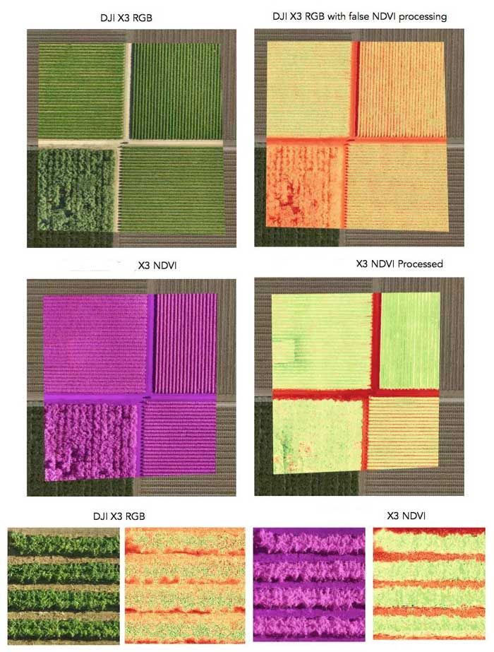 ndvi images