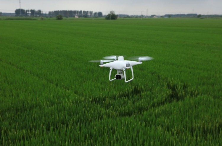 dji-p4-multispectral-agriculture-drone-c